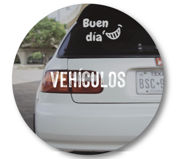 vehiculos.png